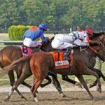 Belmont Stakes Winner