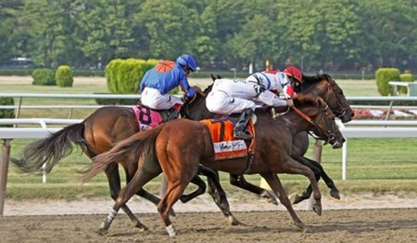 Belmont Stakes Preview 2016
